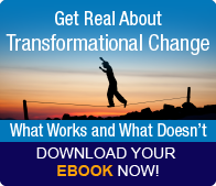 Get Real About Transformational Change [eBook]