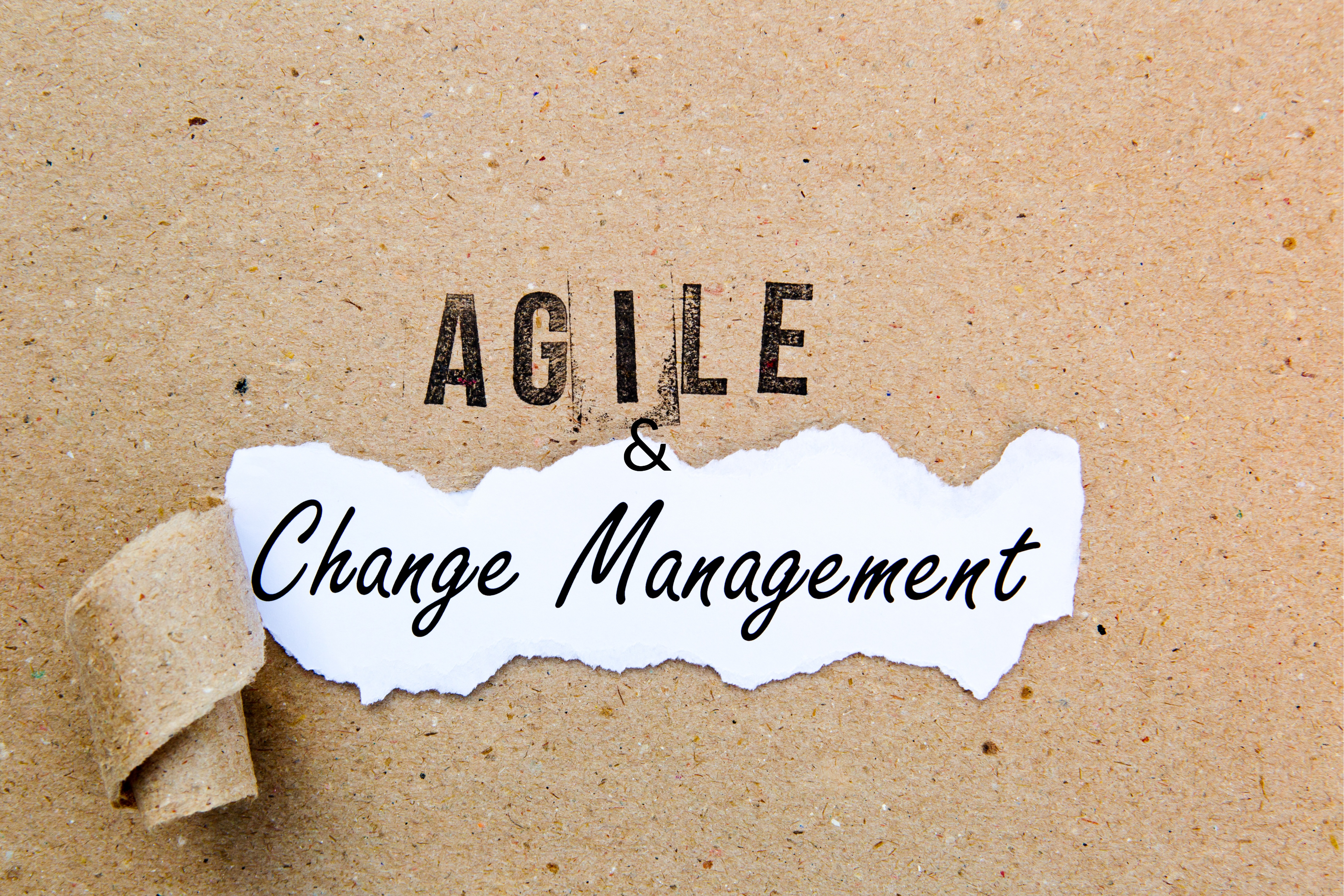 Change Management and Agile