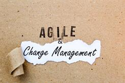 Change Management in an Agile World [Article]