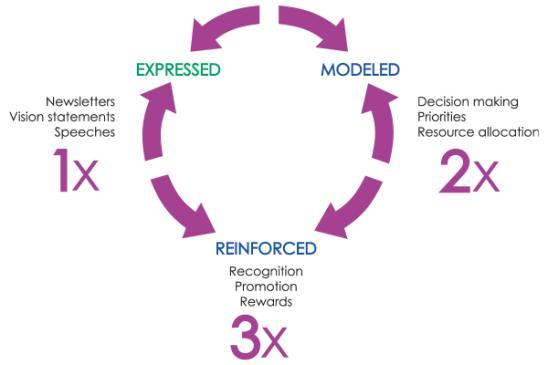 Express_Model_Reinforce